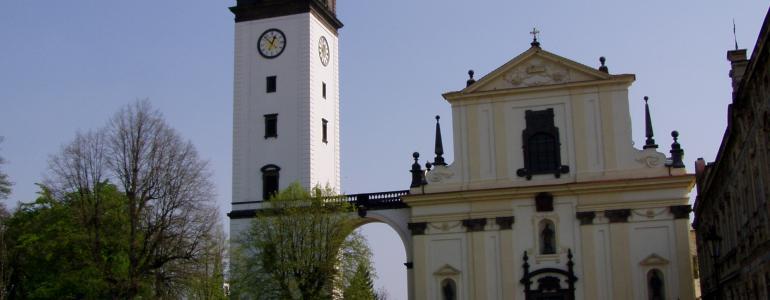 Katedrála sv. Štěpána - Litoměřice
