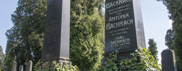Židovský hřbitov - Opava