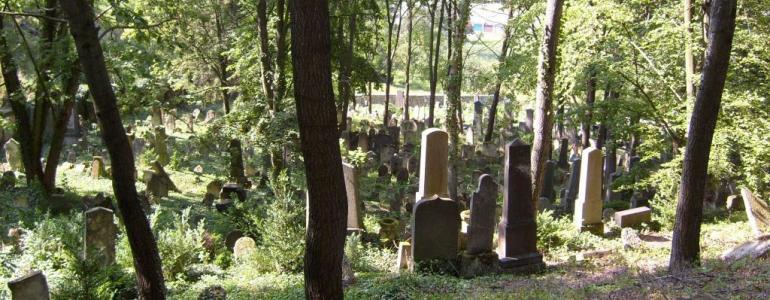 Židovský hřbitov - Boskovice