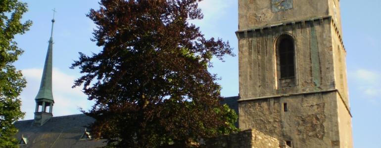 Městský chrám Nanebevzetí Panny Marie - Tachov