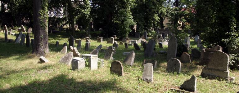 Židovský hřbitov - Hranice