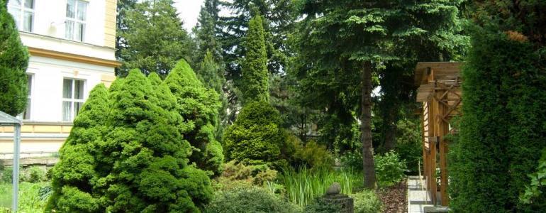 Arboretum Střední lesnické školy Hranice