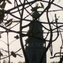 Větvový zámek